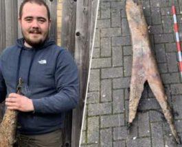 Мужчина нашел огромную кость