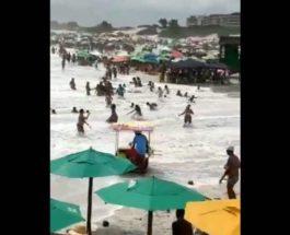 волны,пляж,Бразилия,люди