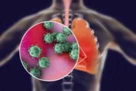 геном нового коронавируса