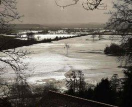 паводковая вода на полях