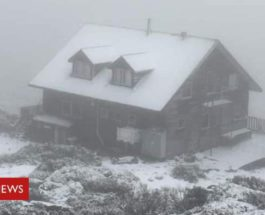 тасмания снег