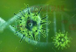 Странное предположение ученого: вирус COVID-19 имеет внеземное происхождение