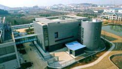 Ведущая китайская вирусологическая лаборатория не способна подавить теорию заговора о коронавирусе