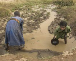 Всемирный день воды,вода,без воды