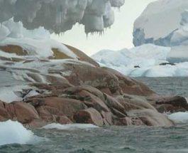 В Антарктиде обнаружен целый новый остров