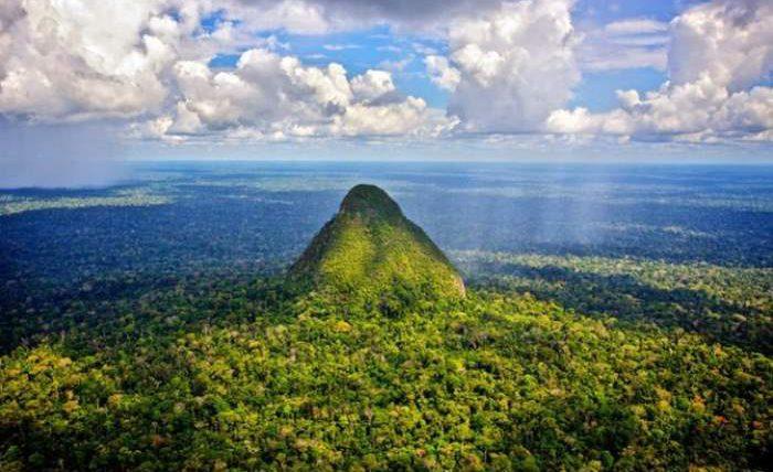 Леса Амазонки
