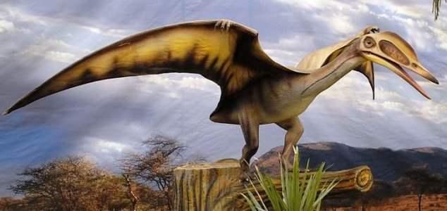 Сахара,птерозавры