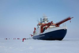 арктика коронавирус