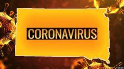Китайские ученые определили, при какой температуре коронавирус перестает распространяться