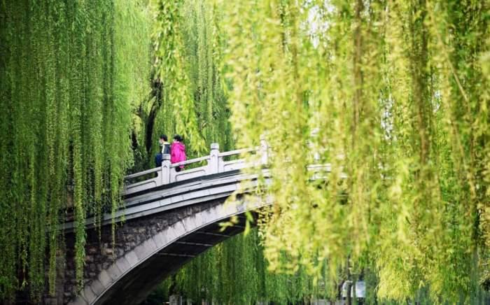 Люди наслаждаются весенним пейзажем