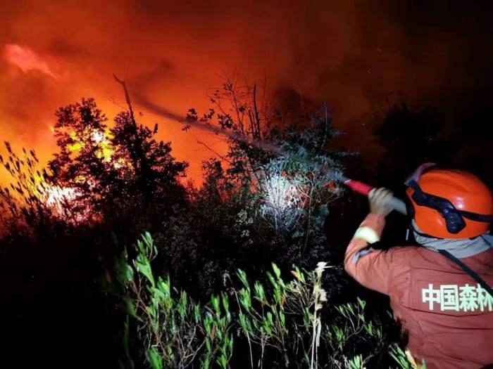 Пожарный борется с огнем