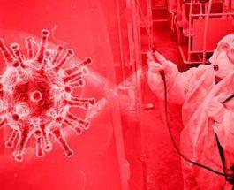 коронавирус 25 апреля