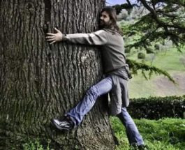 обнимает дерево