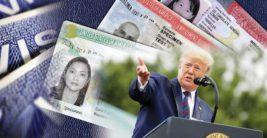 трамп грин карты