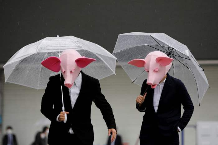 Люди в масках свиньи