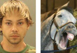 насиловал пони,США,мужчина,Уилмингтон