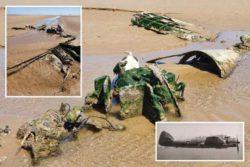 Обломки истребителя Второй мировой войны были обнаружены на пляже