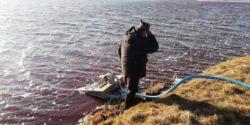 Объявлено чрезвычайное положение в связи с масштабным разливом дизельного топлива в Сибири