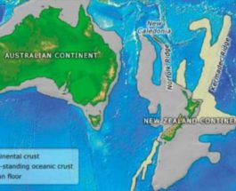 зеландия континент