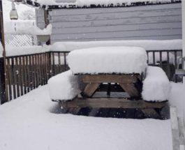 июньский снег