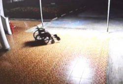 Призрак мертвого пациента толкает свою инвалидную коляску (ВИДЕО)