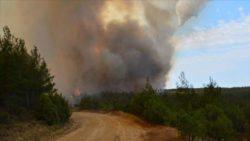 В Дарданеллах (Турция) бушует крупный лесной пожар