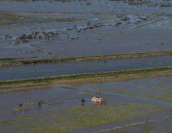 Циклон унес жизни людей и оставил миллионы без электричества в Бразилии