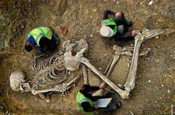 Кому могли принадлежать гигантские скелеты