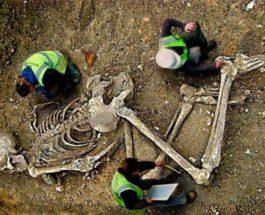 гигантские скелеты