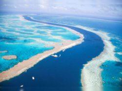 На дне Индийского океана следы древнего поселения