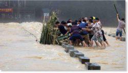 В результате паводков в Монголии погибло 8 человек и 7000 животных
