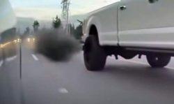 Владельцы дизелей унижают автомобили Tesla на дорогах