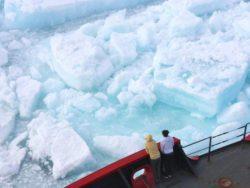 Ученые: тающий лед может разбудить древние вирусы