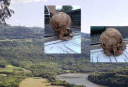 Череп странного существа из Техаса спустя 6 лет вызывает много вопросов