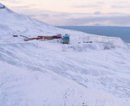 коды в Арктике