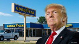 Трамп goodyear