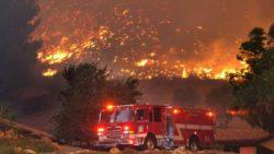 Пожар охватил 40 000 акров леса в Лос-Анджелесе