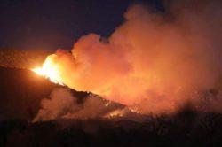 Пожары в Калифорнии. Эвакуировано 8000 человек (ФОТО)