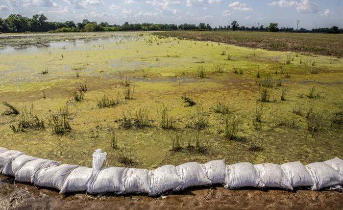 наводнение Миссисипи