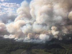 Город в Канаде эвакуирован из-за лесного пожара
