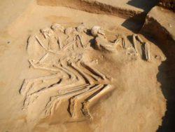 Пять взаимосвязанных неолитических скелетов, датируемых 6-м тысячелетием до нашей эры, обнаружены в ОАЭ
