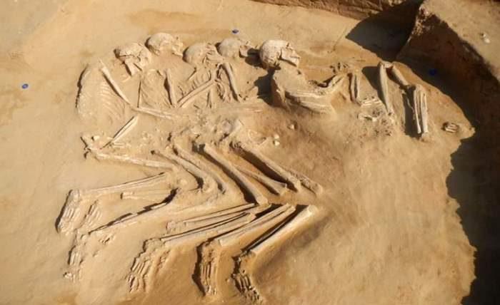 скелеты ОАЭ