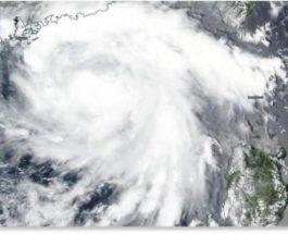 тайфун хигос