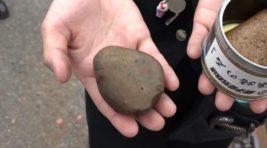 консервированные камни