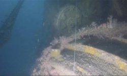 Дайверы в Юго-Восточной Азии нашли американскую подводную лодку Grenadier, потерянную во время Второй мировой войны