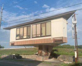 Дом-гриб,Япония,