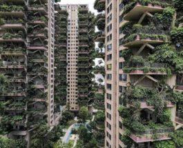 Китай,Вертикальный лес,