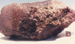 Жизнь на Марсе подтверждена: в марсианском метеорите найден …