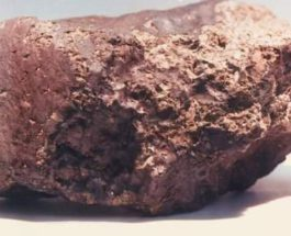 Марс,метеорит,жизнь,