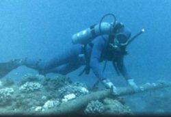 Что происходит?! Войска НАТО для защиты подводных кабелей от России приведены в состояние боевой готовности